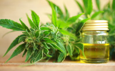 CBD – There's a lot of hype but can it help?